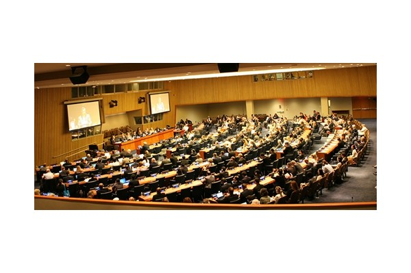 Open Letter to the UN Security Council Members